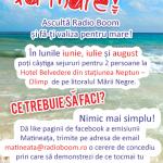 banner-mare2